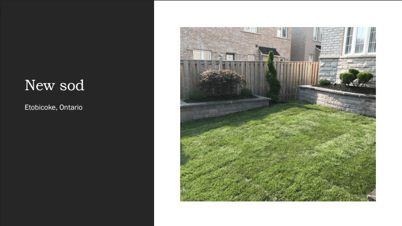 Garden Maintenance by amaris in Etobicoke